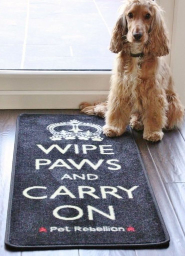 Dog Floor Mat Rug Wipe Paws And Carry On Pawsify