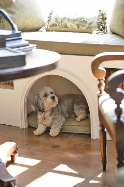 These Unusual Diy Dog Bed Ideas Will Save You Space Pawsify