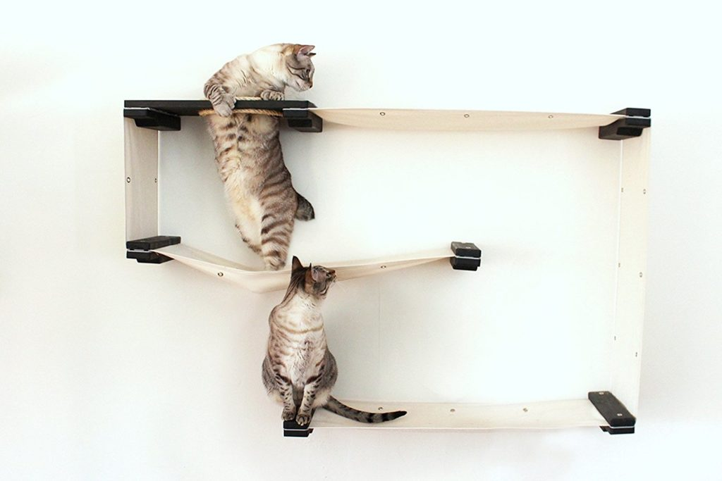 wall mounted cat shelving your cat will adore pawsify