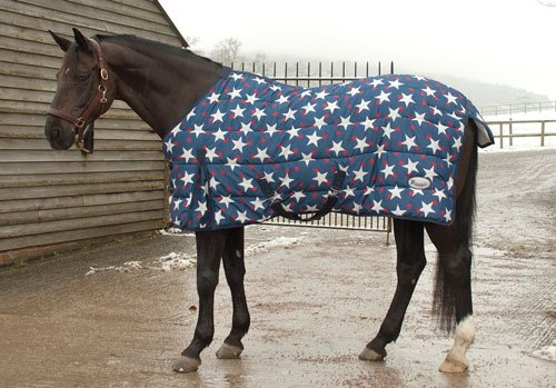 Rhinegold Star Horses Le Quilt Rug