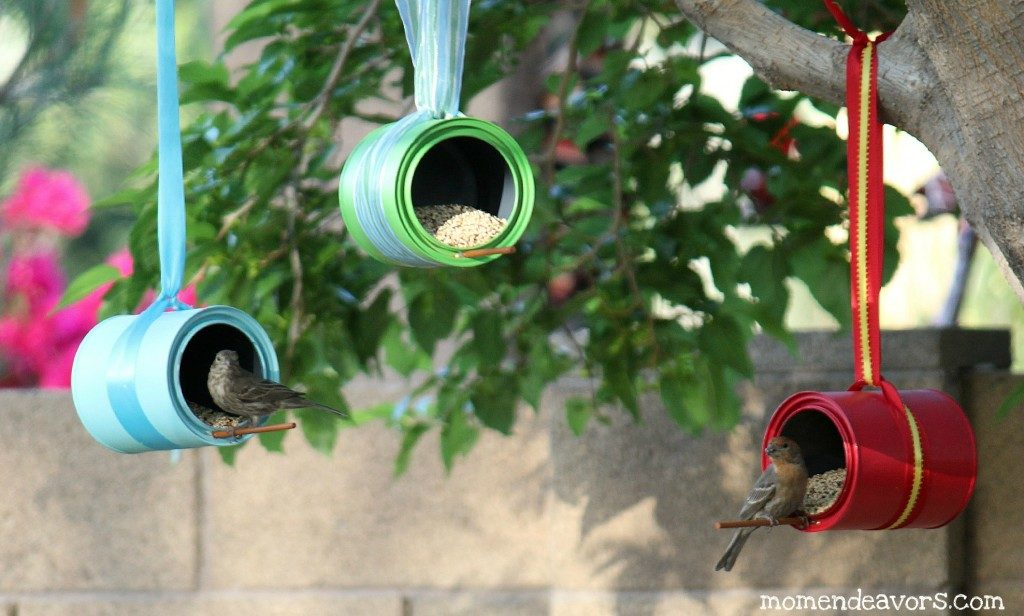 10 diy bird feeders the whole family can make pawsify for Whole coconut bird feeders