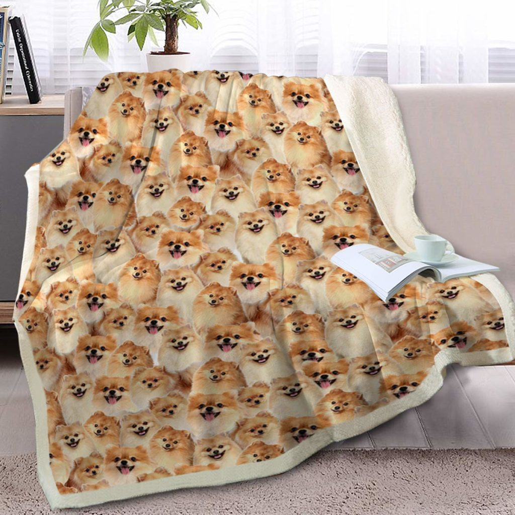 Gifts For Pomeranian Lovers - Pawsify
